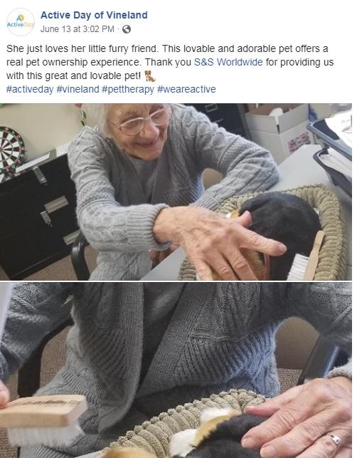 dementia memory pets