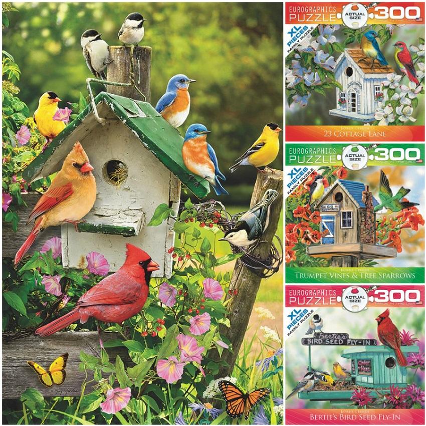Bird Puzzles