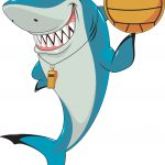 Physical Activity Ideas for Shark Week