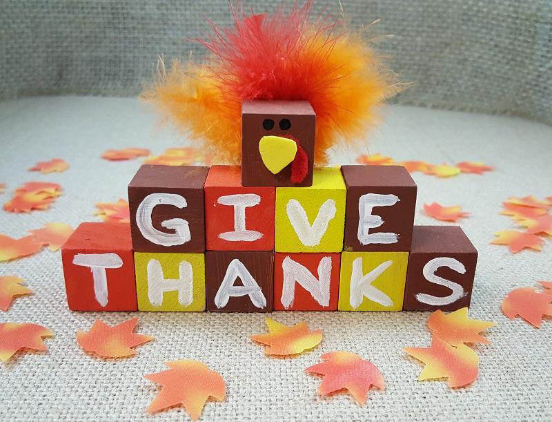 thanksgiving turkey blocks