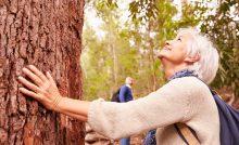 National Arbor Day senior residents