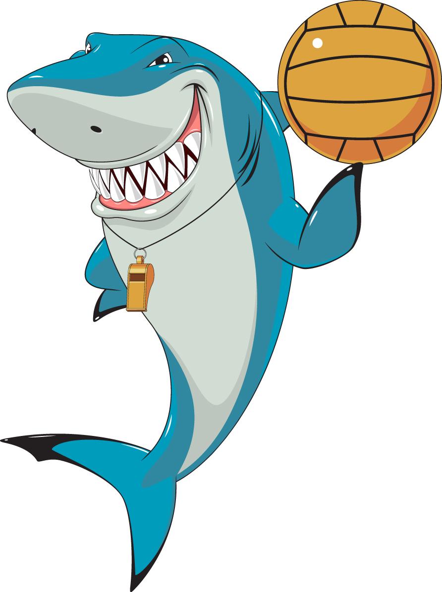 Shark Week activities