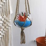 DIY Succulent Crafts, Hanging Plants & Air Gardens