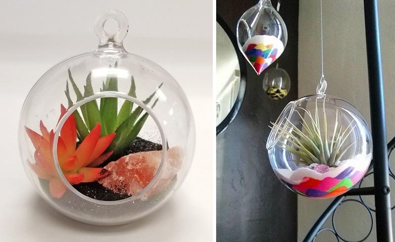 hanging plastic terrarium