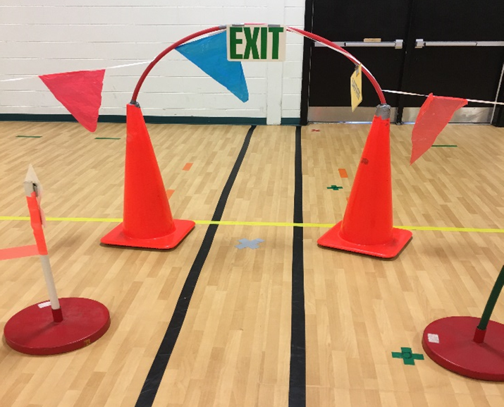 locomotor city cones